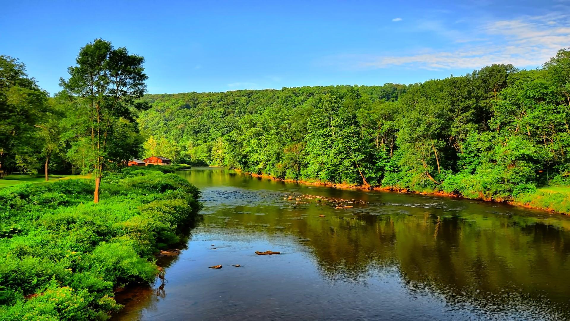Река в Приморском крае